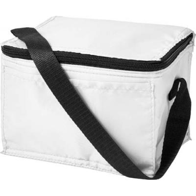 Image of Polyester (210D) rectangular cooler bag